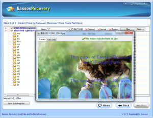 photo recovery software 0004-3