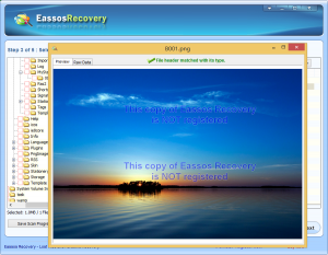 file recovery software 203